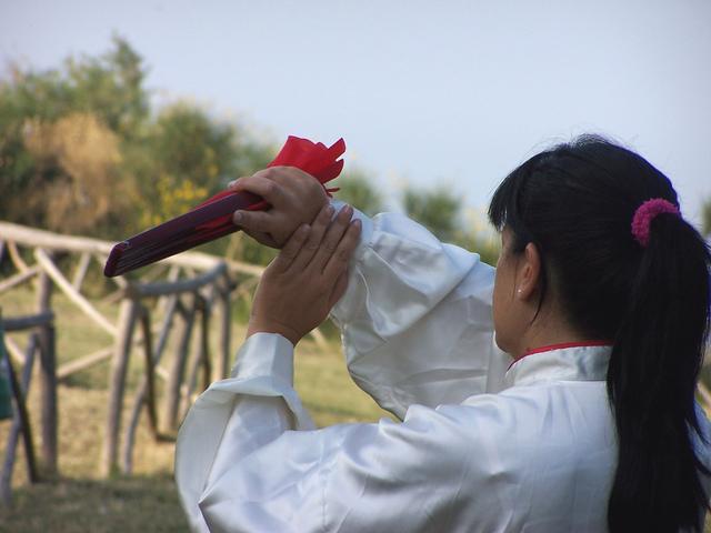 Il Taijiquan